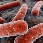Operatore di casa di riposo affetto da tubercolosi, profilassi per ospiti e dipendenti