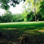 """""""Andar a erbe in tutti i sensi"""": una festa della natura nella natura"""