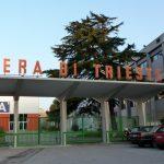 Area ex Fiera di Trieste venduta ad un gruppo austriaco per 12 milioni di euro