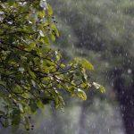 Allerta meteo gialla della Protezione Civile del FVG per piogge intense fino a venerdì