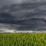 Allerta meteo da mercoledì per temporali, pioggia abbondante e colpi di vento