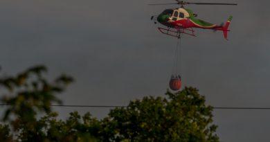 Vasto incendio sul Carso sloveno, impegnati anche pompieri dall'Italia