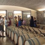 Enotour per i cultori del buon vino nel cuore dei vigneti storici del Friuli