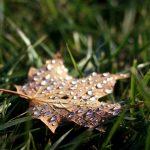 Netta virata del clima sull'Italia nel fine settimana: anticipo d'autunno con allerta meteo
