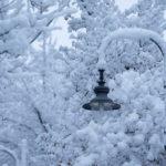 Neve fino a quote collinari in Friuli Venezia Giulia, fiocchi sul Carso triestino. Le foto