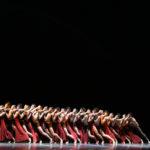 """""""Ts Danza 4.0"""": un carnet di proposte italiane e internazionali interessanti al Rossetti"""