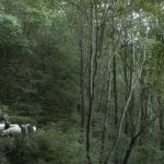 Parte il tour regionale di The New Wild: sui nuovi paesaggi dal Cinema Sociale di Gemona