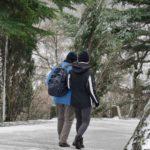 Neve su tutto il Friuli Venezia Giulia, Trieste imbiancata: video. Allerta meteo per ghiaccio