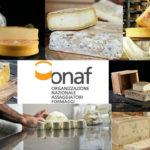 Fantastici formaggi: conoscerli, e dove trovarli. Corso per assaggiatori a Pordenone