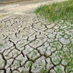I cambiamenti climatici e gli effetti sul Friuli Venezia Giulia in uno studio dell'Arpa