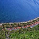 Trieste Running Festival, una settimana all'insegna della corsa per tutti i gusti