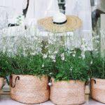 """Il Palmanova Outlet Village si veste di fiori con il """"Flower Market"""". Una due giorni dedicata a orto e giardino"""