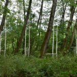"""A Caneva, Polcenigo e Pordenone """"Humus Park"""" rassegna internazionale di Land Art. Le foto"""