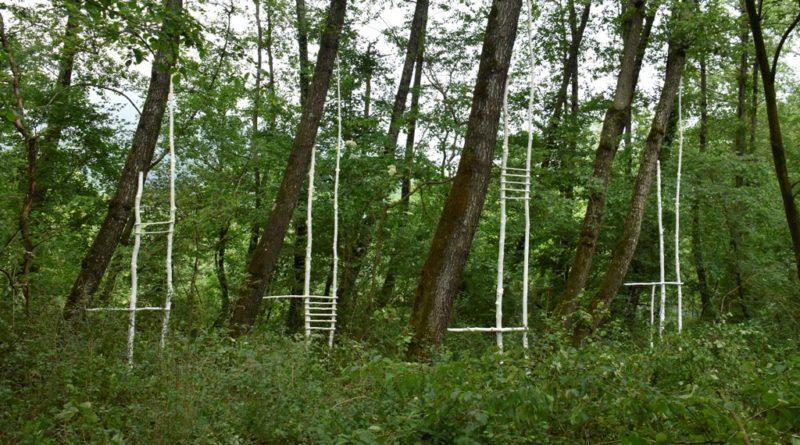 """Al via a Caneva, Polcenigo e Pordenone """"Humus Park"""" rassegna internazionale di Land Art. Le foto"""