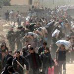 La richiesta di asilo non può essere rifiutata: sentenza del Tribunale di Trieste