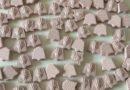 Trieste: tre persone denunciate per spaccio di ecstasy, cocaina e marijuana