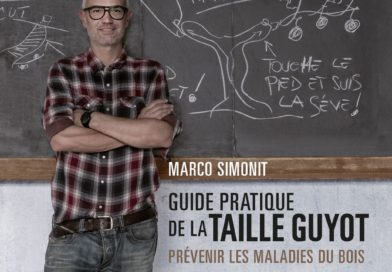 "Il ""Premio Nobel"" della letteratura vitivinicola alla ""Guide pratique de la taille guyot – Prévenir les maladies du bois"" di Marco Simonit"