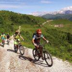 In Carnia: Zoncolan a tutto sport! Bike, passeggiate, escursioni a cavallo e malghe