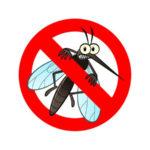 Pericolo zanzare in aumento a Nord Est: non abbassare la guardia in autunno e inverno