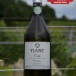 Per il 5° anno consecutivo i Tre Bicchieri del Gambero Rosso al Sauvignon di Tiare