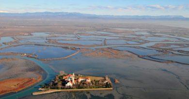 Escherichia coli e salmonella lungo la costa di Lignano: controlli dell'ARPA