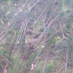 Legambiente Friuli Venezia Giulia sui disastri del maltempo: non sottovalutare i cambiamenti climatici