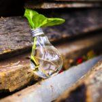 Legambiente FVG lancia Ecoforum: l'economia circolare dei rifiuti
