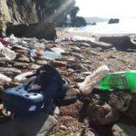 Mareggiata a Miramare: la Riserva cerca volontari per pulire la spiaggetta protetta