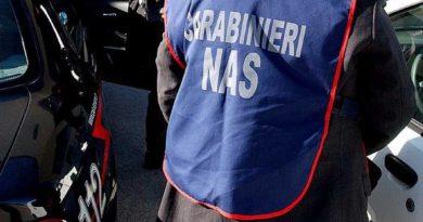 Controlli dei Carabinieri nei ristoranti: fuori norma pizzeria in centro a Trieste