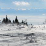 Allerta meteo della Protezione Civile per vento forte in montagna e raffiche nel fondovalle