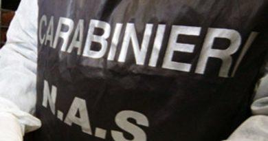 Salumificio con prodotti mal conservati, chiuso dai NAS. Sequestrati wurstel, prosciutti e carne congelata