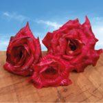 La Rosa dell'Isonzo protagonista alla Tavernetta al Castello di Capriva del Friuli – 12 febbraio