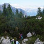 Un ghiacciaio sepolto sotto 8 metri di bosco: l'eccezionale scoperta nei pressi di Sauris