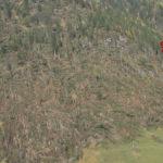 Tempesta Vaia in FVG, stanziati 450 milioni di euro. Task force su cambiamenti climatici