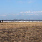 Recuperati 500 ettari di magredi nell'alta pianura friulana con un progetto europeo