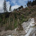 Tempesta Vaia: studenti universitari in visita alla foresta di Pramosio. Le foto