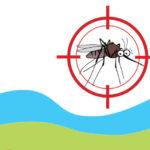 Alla vigilia della stagione calda provvedimenti regionali per la lotta alle zanzare