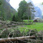 Tempesta Vaia: riaperta la Val Cimoliana ma c'è ancora molto da fare. Fotogallery