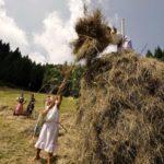 """Rinviata a domenica 4 agosto """"Fasjn la mede"""" in Carnia a Sutrio, festa della fienagione nei prati dello Zoncolan"""