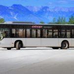Sentenza definitiva del Consiglio di Stato: confermato l'affido del trasporto pubblico a TPL FVG