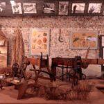 Domenica al museo, il 1° settembre molte raccolte regionali e civiche sono gratis