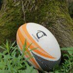 Rugby, a Udine pianteranno un albero per ogni nuovo piccolo rugbysta