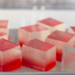 Java Biocolloid, società leader nella produzione di agar-agar, inaugura la sede europea nell'area Freeway di Trieste