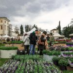 """""""Nel giardino del Doge Manin"""" sul tema delle radici: rassegna florovivaistica e non solo"""