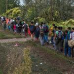 Le Polizie di Italia, Slovenia, Croazia e Bosnia sgominano banda di trafficanti di migranti