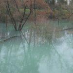Pericolo alluvione a Pordenone. Preoccupa il livello di Noncello e Meduna