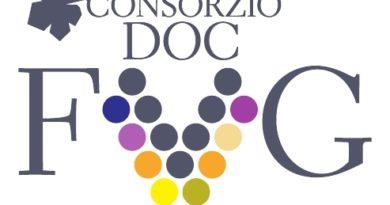 Il Consorzio per la tutela dei vini della Doc Friuli è realtà: firmato atto fondativo