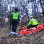 Valcellina, ferito gravemente un boscaiolo colpito da un tronco in zona impervia