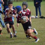 Rugby, l'OverBugLine Codroipo si prepara ad una primavera ricchissima di eventi