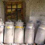 Salviamo il nostro settore agroalimentare, appello ai caseifici: utilizzare latte friulano